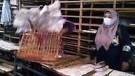 Aksi Pedagang Ramai-ramai Buang Tempe