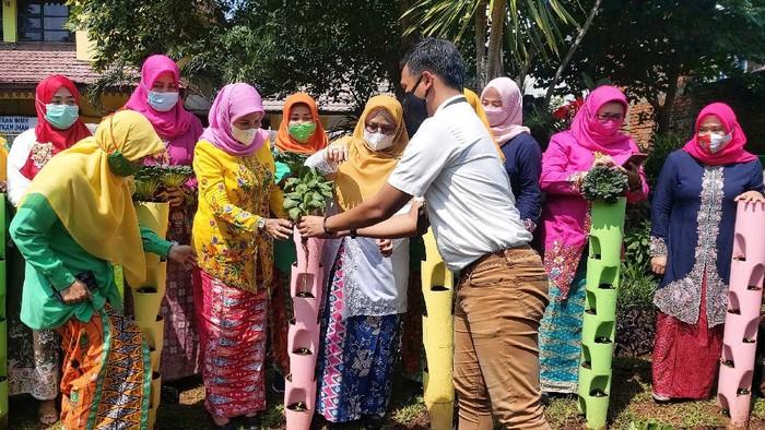 Para pengurus PKK Jakarta Timur mendengarkan penjelasan mengenai teknik budidaya sayuran untuk bercocok tanam di tengah perkotaan saat pandemi. Apa hasilnya?