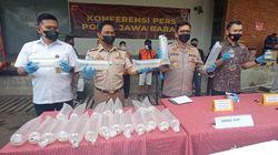70 Ribu Benur Asal Sukabumi Diselundupkan ke Banten