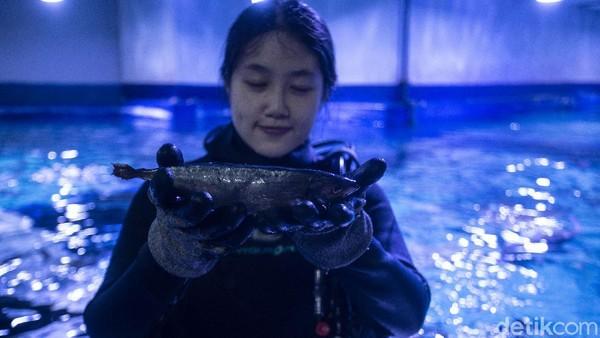 Meski begitu, tantangan yang dihadapi Lin tak mengendurkan semangat gadis tersebut untuk terus merawat para satwa.