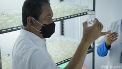 China Kembalikan Produk Ikan yang Terpapar COVID-19, RI Ambil Langkah Ini