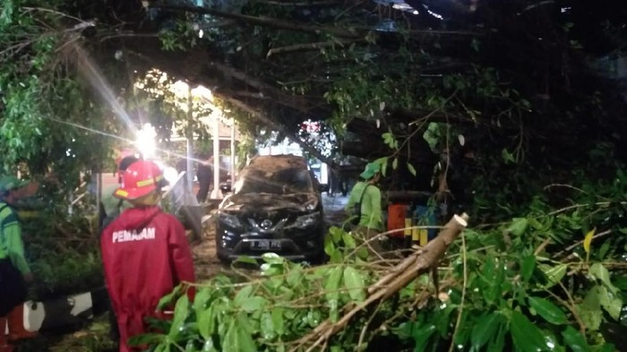 Pohon tumbang timpa mobil dan 4 motor di Jaksel, Jumat (23/4/2021).