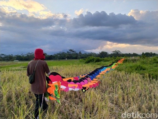 Salah satu pemilik layang-layang, Ardi Noviyanto (25), mengatakan layang-layang naga yang diterbangkan panjangnya 50 meter. Layang-layang berbahan parasut biasanya sebulan sekali diterbangkan di Pantai Parangkusumo.