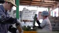 Jugyeom, Garam Bambu yang Terkenal Mahal dari Korea Selatan
