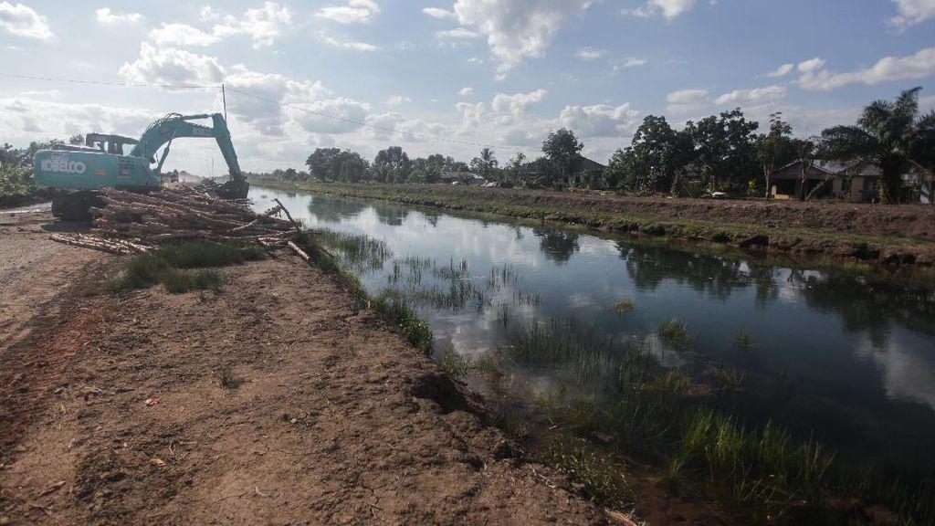 Lumbung Pangan RI di Kalimantan Tengah Dikebut, Begini Progresnya