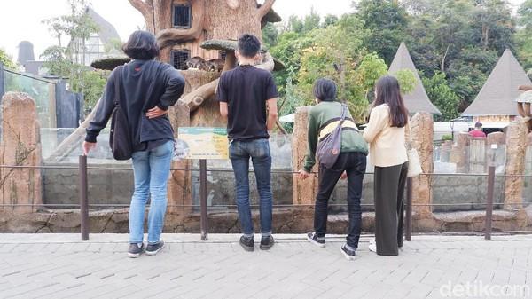 Pantauan detikcom, akhir pekan lalu (24/4) nampak beberapa pengunjung memilih ngabuburit di kebun binatang tersebut.