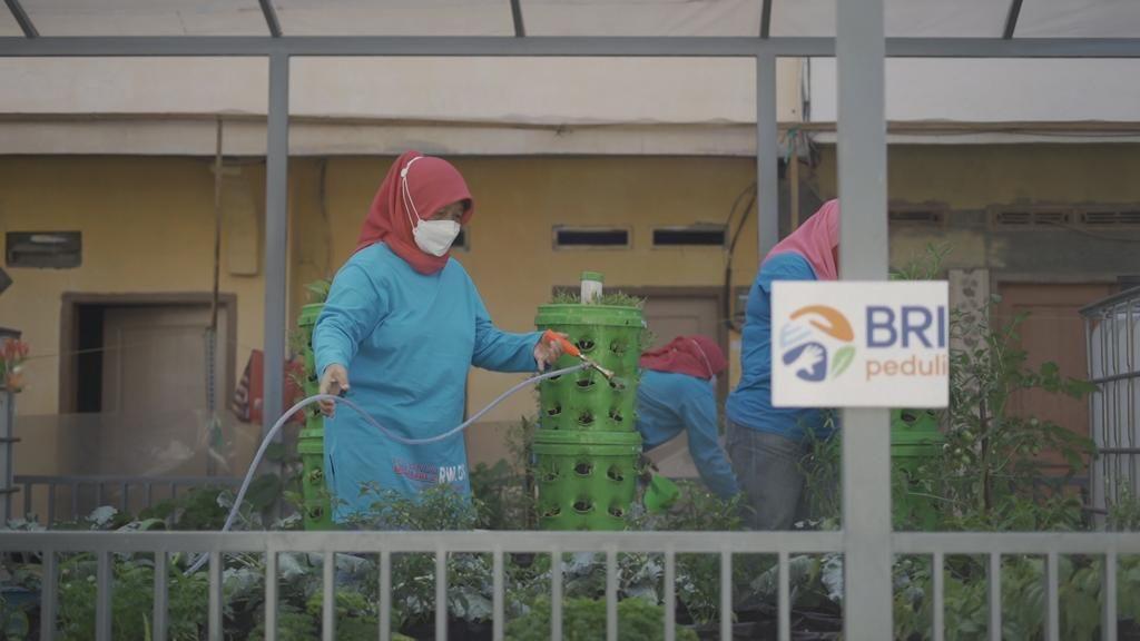Peringati Hari Kartini, BRI Beri Bantuan Urban Farming Rp 1,8 Miliar