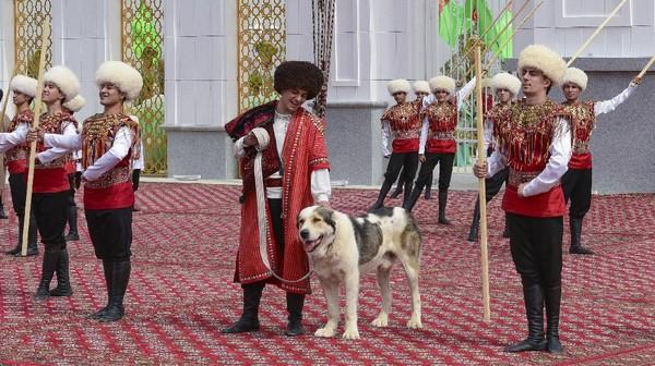 Di Hari Alabay yang didedikasikan untuk anjing Alabay tersebut diwarnai dengan kontes pemilihan anjing gembala besar yang paling baik. Di acara tersebut, anjing-anjing gembala itu diarak dalam prosesi dan dinilai dari segi penampilan hingga kelincahannya.