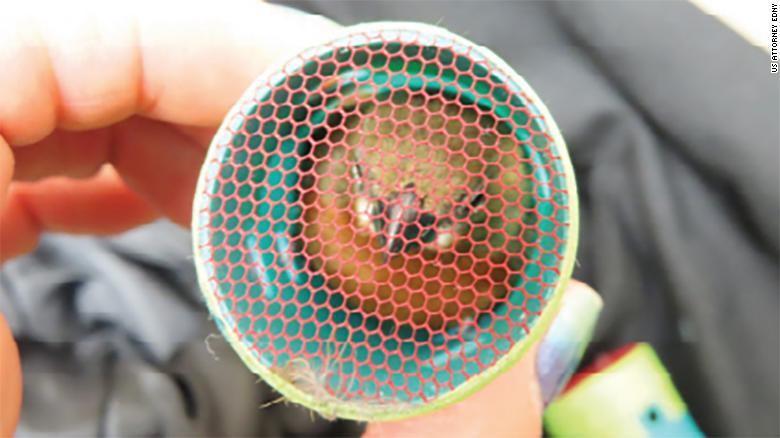 Burung Finch dari Guyana dikenal bisa mengeluarkan suara indah