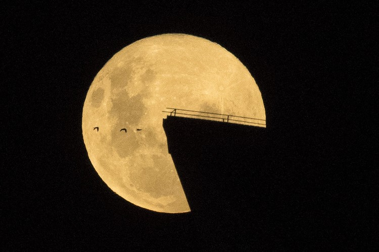Birds fly by as the moon rises over the Opera House in Sydney, Australia, Tuesday, April 27, 2021. This moon is a supermoon, meaning it appears larger than an average full moon because it is nearer the closest point of its orbit to Earth. (Mick Tsikas/AAP Image via AP)
