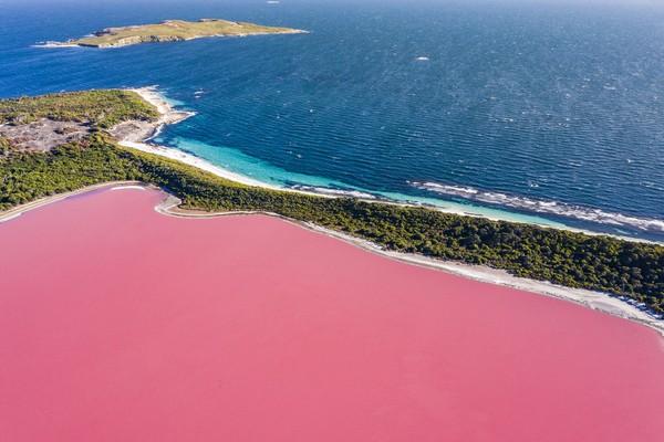 Danau yang berlokasi di Middle Island ini pertama kali ditemukan oleh Angkatan Laut Kerajaan Inggris pada 1802.