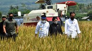 Foto: Jokowi Tinjau Panen Raya di Malang