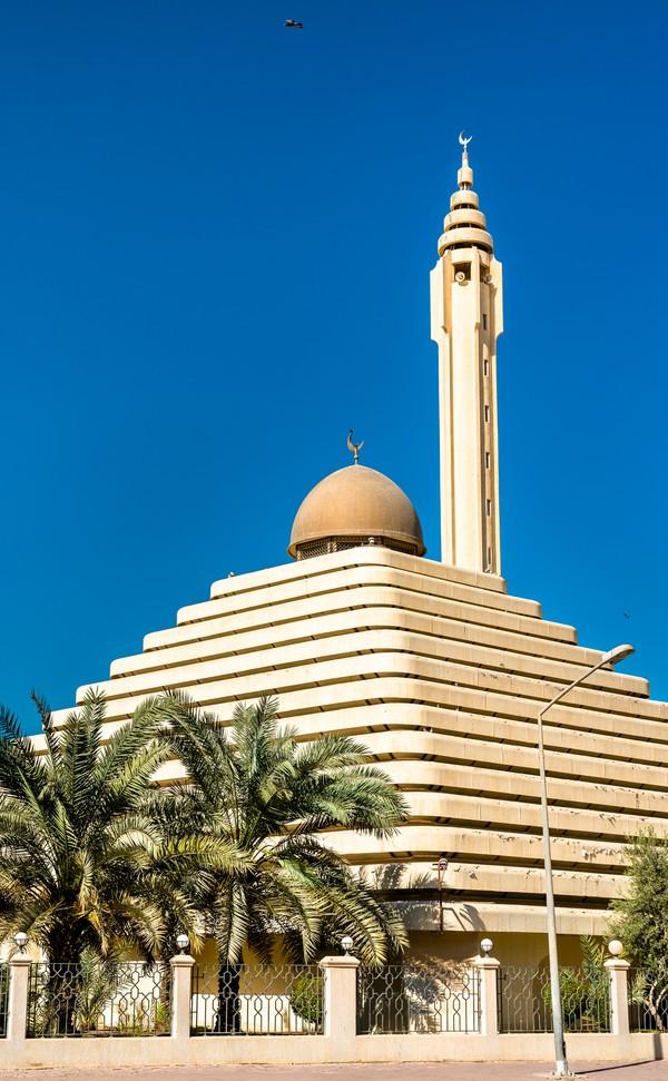 Masjid Sheikh Nasser berdiri di atas lahan seluas 2.150 meter persegi. Masjid ini juga memiliki menara di sampingnya setinggi 50 meter yang menghiasi halamannya.