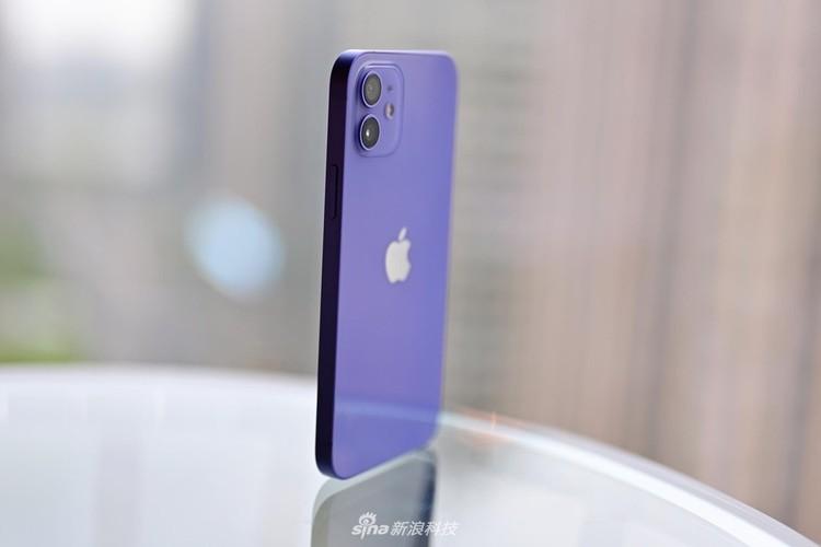 iPhone 12 Ungu