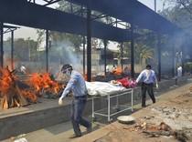 Corona di India, Sehari 400 Ribu Kasus-Nyaris 4 Ribu Kematian