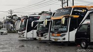 Sehari Jelang Larangan Mudik, PO Bus di MakassarDipadati Pemudik