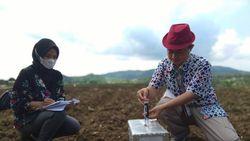 Ini Cara Kampung Sayuran di BantulTerapkan Budidaya Ramah Lingkungan