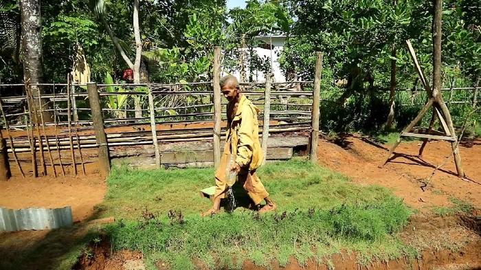 Kakek di Sulawesi Selatan membangun rumah bawah tanah menggunakan cangkul