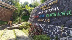 Pendakian Gunung Gede Pangrango Ditutup Selama Penerapan Larangan Mudik