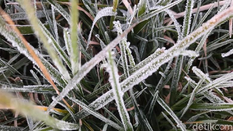 Embun es kembali hampiri komplek Candi Arjuna di Dieng (10/5).