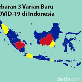 3 Varian Berbahaya COVID-19 Sudah Ada di Indonesia, Ini Sebarannya