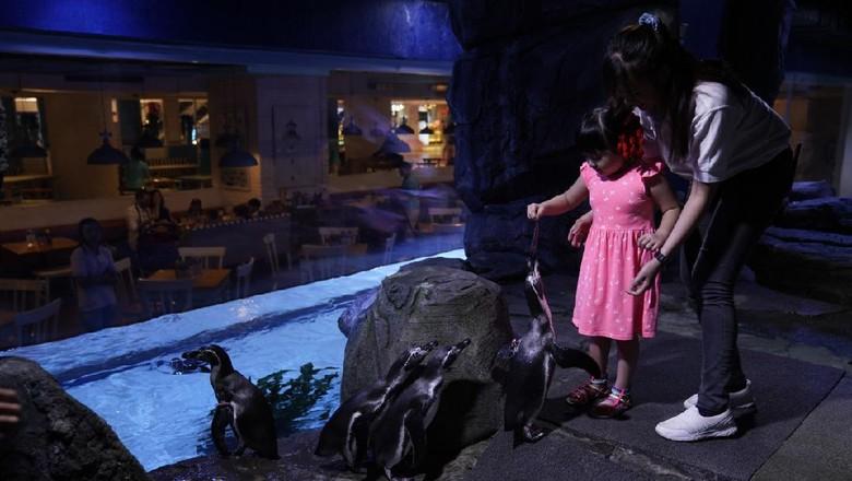 Jakarta Aquarium.