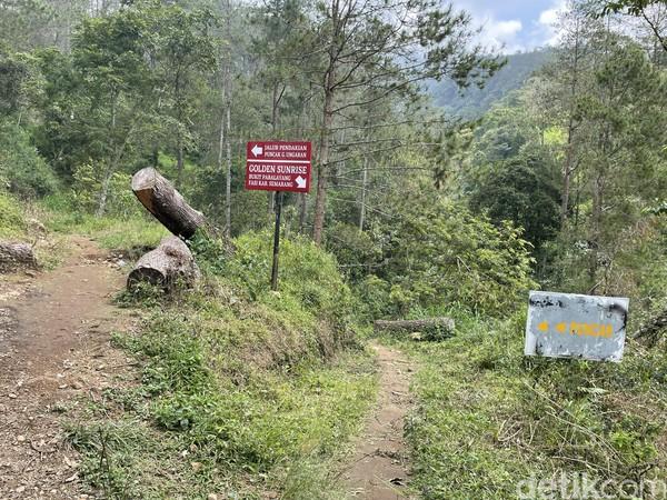 Ada pemindahan jalur pendakian ke puncak Gunung Ungaran. Jalur baru ini untuk mempersingkat perjalanan dari Mawar Camp - Gunung Ungaran Semarang ke Pos I dan sudah berlaku pada 14 Agustus 2020 lalu.