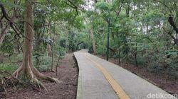 Polisi Temukan Harta Karun Kuno-Hutan Mini Jakarta Semakin Tertata