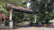Jenuh Tak Mudik Lebaran? Cobalah Berkunjung ke Hutan Mini Jakarta Ini