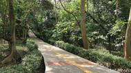 Rupa Hutan Mini Jakarta, Siap Menyambutmu di Libur Lebaran