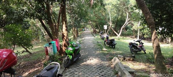 Motor bisa dibawa masuk jauh ke dalam Kawasan Ekowisata Mangrove PIK.
