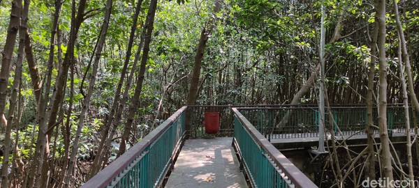 Tiap sudut jalur pedestrian Kawasan Ekowisata Mangrove PIK ini memiliki tong sampah.
