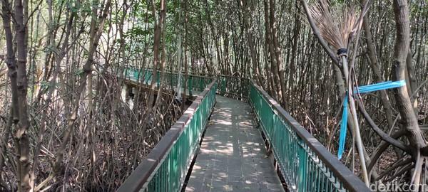 Jalur pedestrian di Kawasan Ekowisata Mangrove PIK.