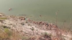 Evakuasi Jenazah Hanyut Diduga Corona, India Pasang Jaring di Sungai Gangga