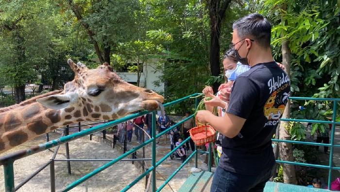 Hari Raya Idul Fitri, Tempat Wisata di Surabaya Sepi