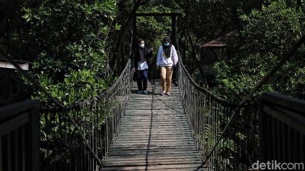 Pengunjung pun dapat berjalan melintasi jembatan sembari menikmati pemandangan hutan mangrove di kawasan ekowisata tersebut.