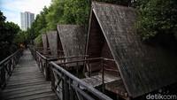 Menjelajah Hutan Mangrove di Pesisir Ibu Kota