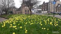 Merayakan Lebaran dalam Kesederhanaan di Old Town Stirling