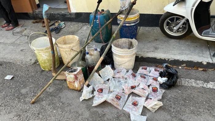 Resahkan Warga, Tiga Desa Nyalakan Petasan di Pacitan Digerebek