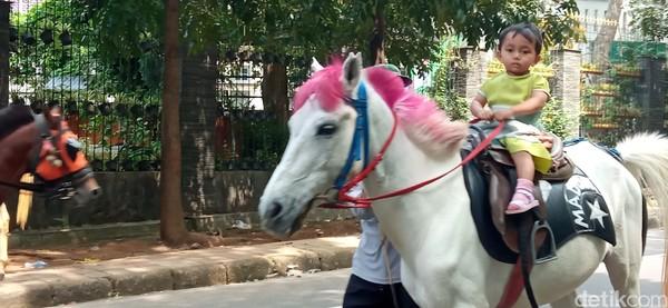 Di kawasan Taman Cilaki Bandung, deretan kuda menanti untuk ditunggangi oleh pengunjung.