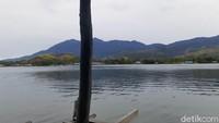 Ini Kayu dari Papua yang Tahan Ratusan Tahun Terendam Air