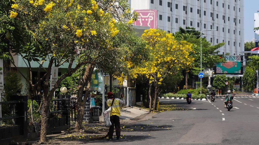 Libur Lebaran Makin Berseri dengan Bunga Tabebuya Bermekaran di Surabaya