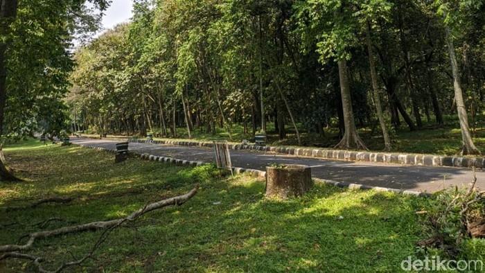 Tempat-tempat wisata di Kabupaten Pasuruan buka selama libur Lebaran. Salah satu yang layak dikunjungi Kebun Raya Purwodadi.