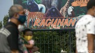 Imbas Penguatan PPKM Mikro, Taman Margasatwa Ragunan Sementara Ditutup