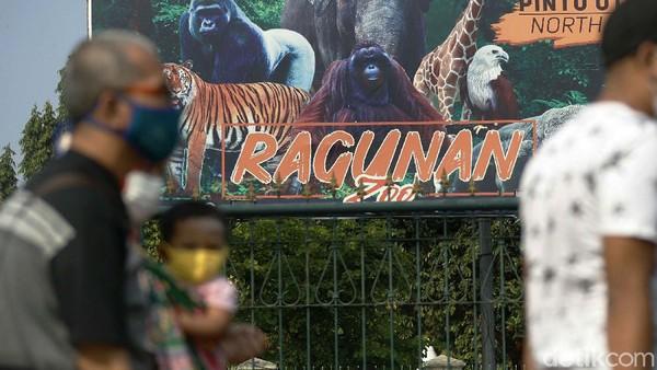 Mereka terpaksa balik kanan dan meninggalkan area Taman Wisata Ragunan.