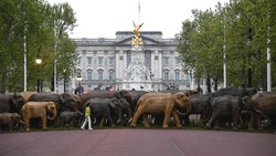 Ketika 100 Patung Gajah Konvoi di Depan Istana Buckingham