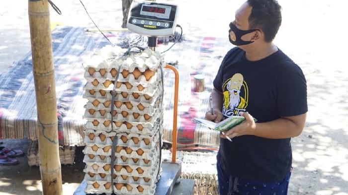 Pedagang telur ayam