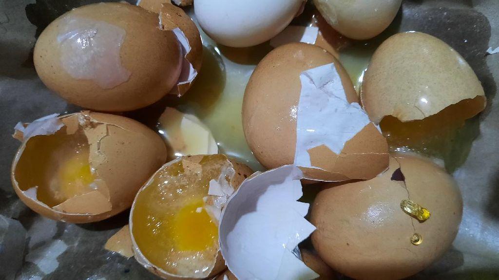 Ada Isu Telur Asli Dibilang Palsu, Kemendag Pastikan Pengawasan Ketat