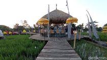 Foto: Kampung Sabin, Cirebon Rasa Bali