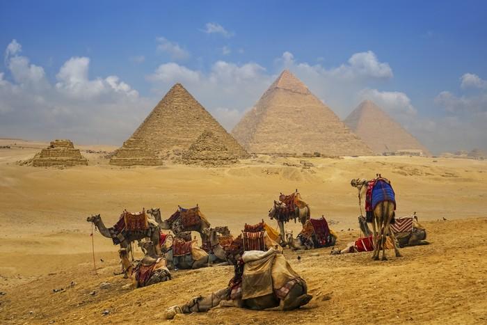 Karavan onta di depan piramida Mesir